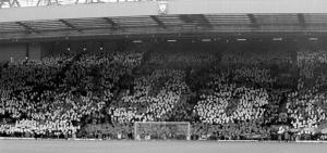 Мозаика на «Энфилде» во время матча с «Манчестер Юнайтед» (c) Liverpool Echo