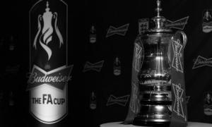 Фотография Кубка Англии  © guardian.co.uk