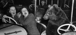 Фотография двух женщин и медведя